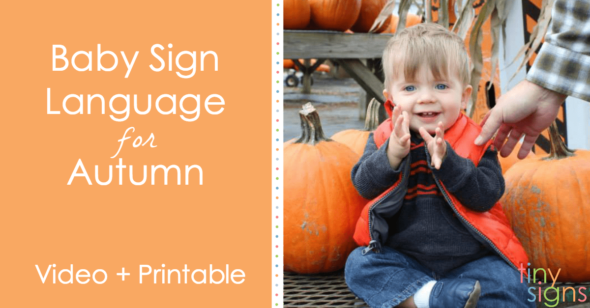 Baby Sign Language for Autumn