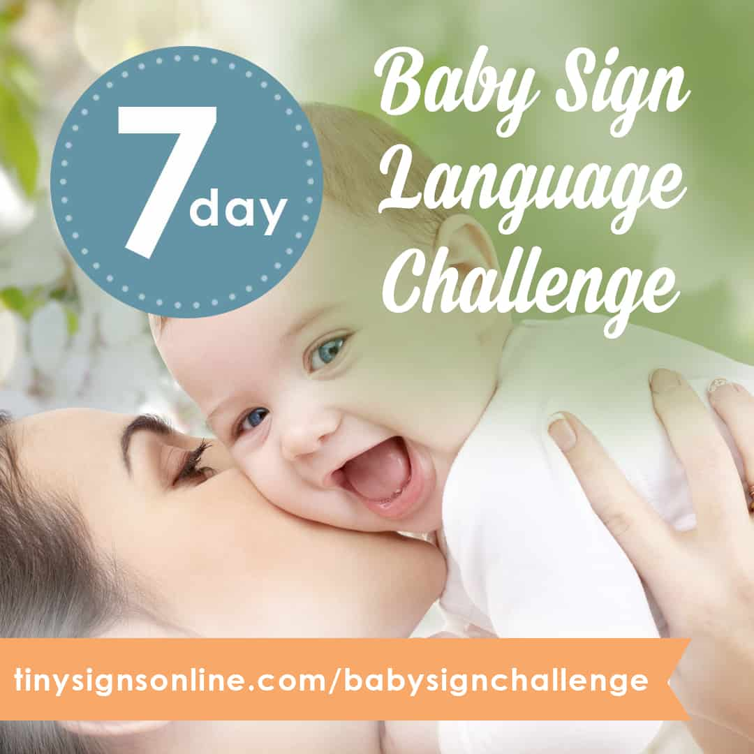 baby sign language essays Garcia's sign with your baby program is based on american sign language, while the baby signs program, created by psychologists linda acredolo and susan goodwyn, uses a set of simple signs designed for babies.