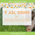 9 American Sign Language Signs for Spring