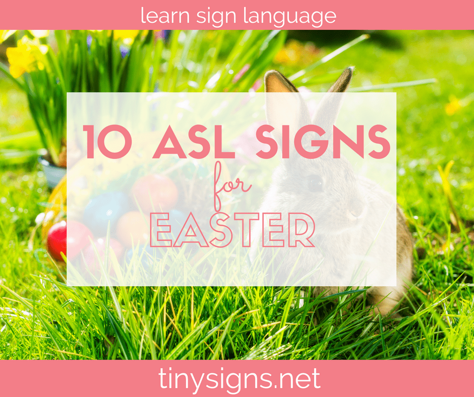 Learn How To Do 10 American Sign Language Asl Signs For
